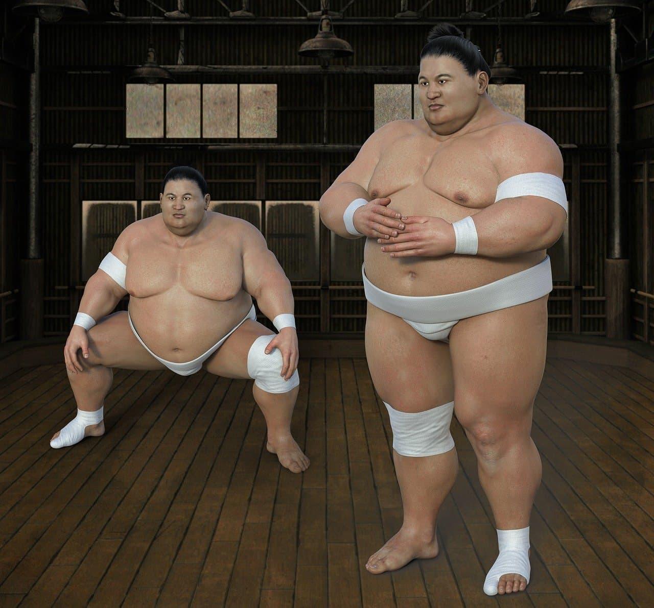 相撲用語一覧