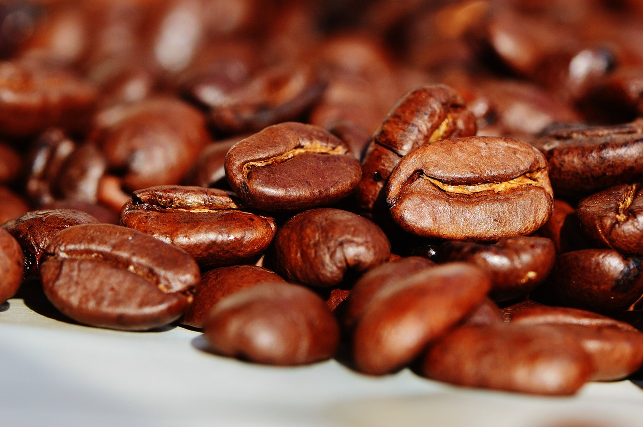 コーヒーの生産地